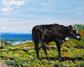 Cattle on the grassy hills of the Wild Coast are a common sight. Watching them graze, whilst listening to the waves breaking in the background, is restful. I saw this bull on a walk one morning at Hluleka. He watched me wearily at first but allowed me quite close.